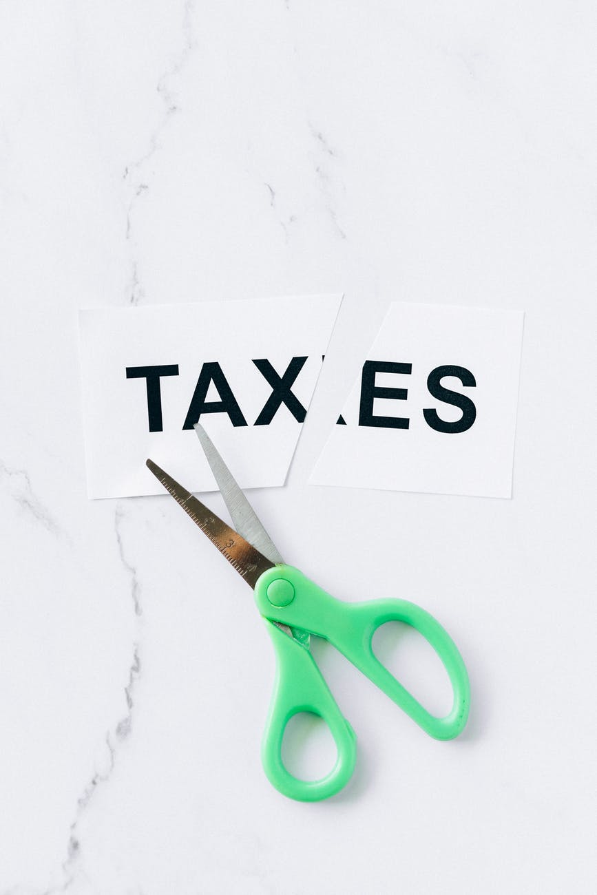 Understanding the Basics of Paying Taxes as a LLC